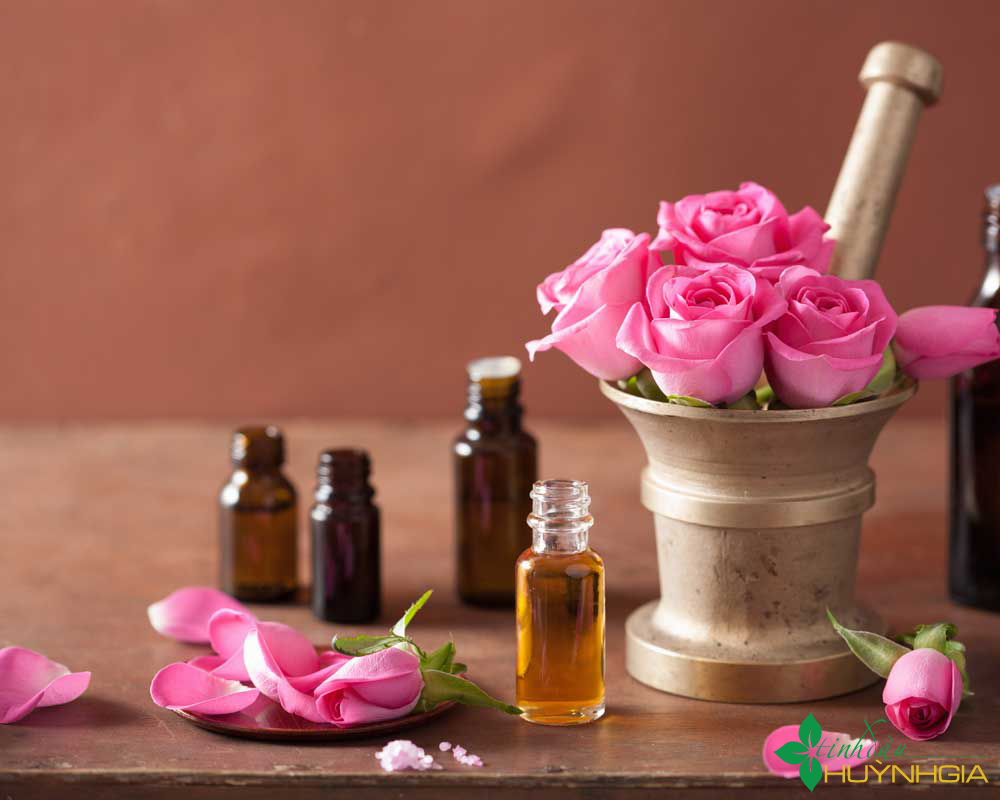 Mua tinh dầu hoa hồng tại Quy Nhơn.