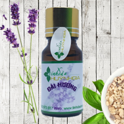 Tinh dầu OẢI HƯƠNG (Lavender) nguyên chất
